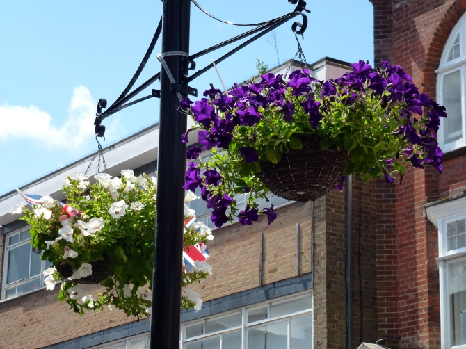 Hanging baskets Camberley High Street