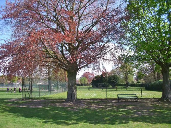 Tennis courts Watchetts Park