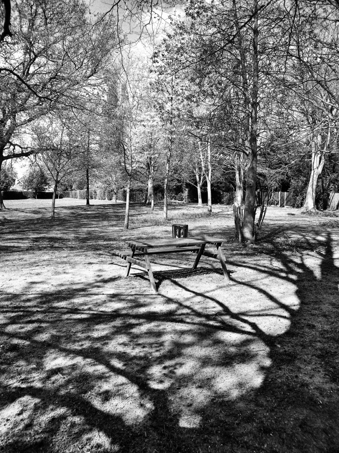 Picnic table Watchetts Park